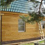 """Дом 8х6, СНТ Ягодный, апрель 2011 """"Гусь деревянный"""""""